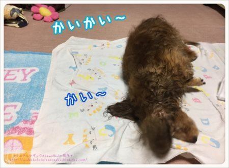 2017/07/06 お風呂 カイカイ