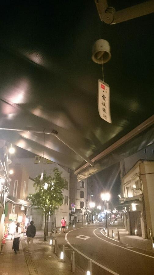 201706ロープウエイ通り縦