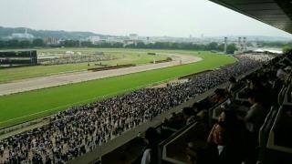 NHKマイルカップ_001