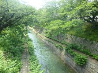 523P1010668三井寺参道琵琶湖疎水