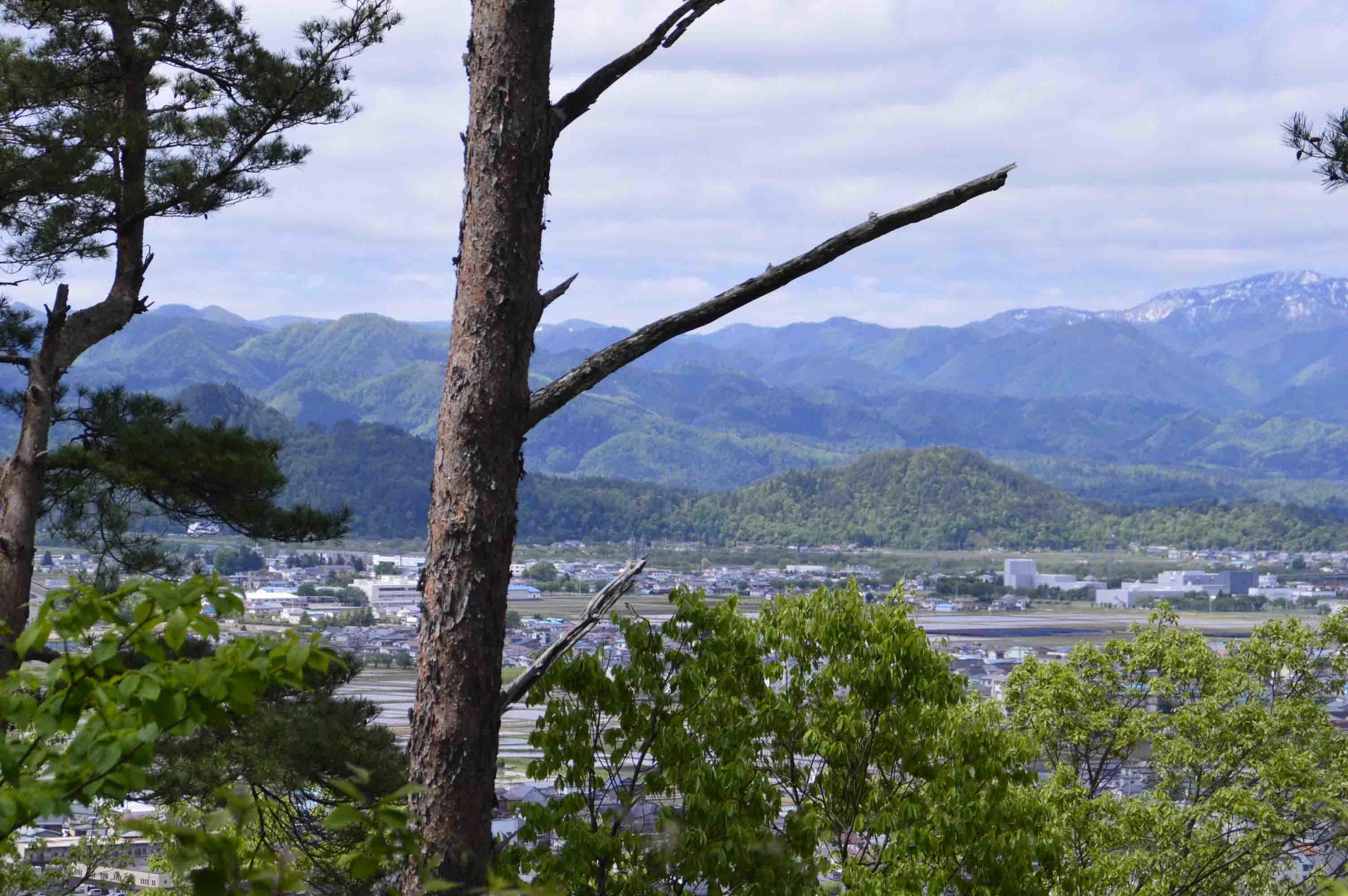 小田山からの向羽黒山城