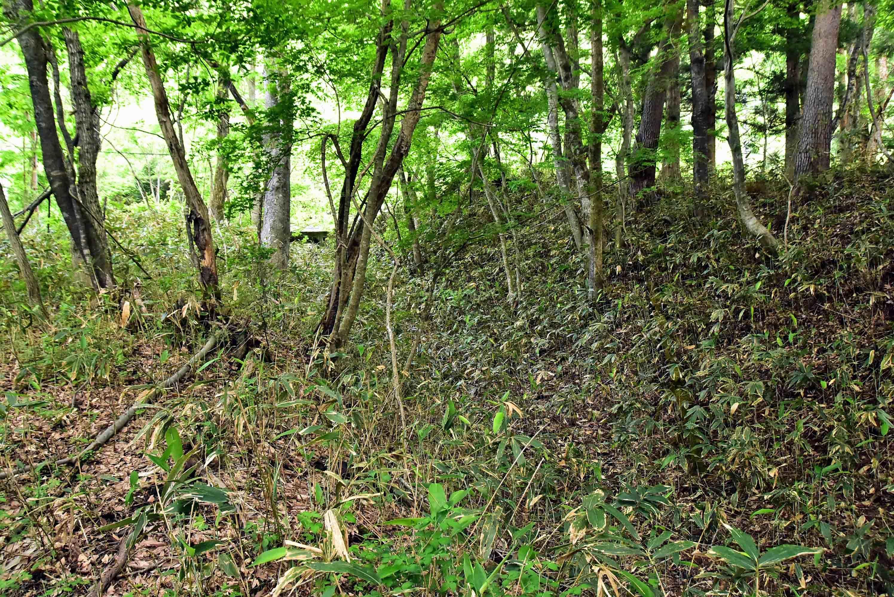 鶴が淵城 長塁 堀と土塁で奥に会津鉄道が見える