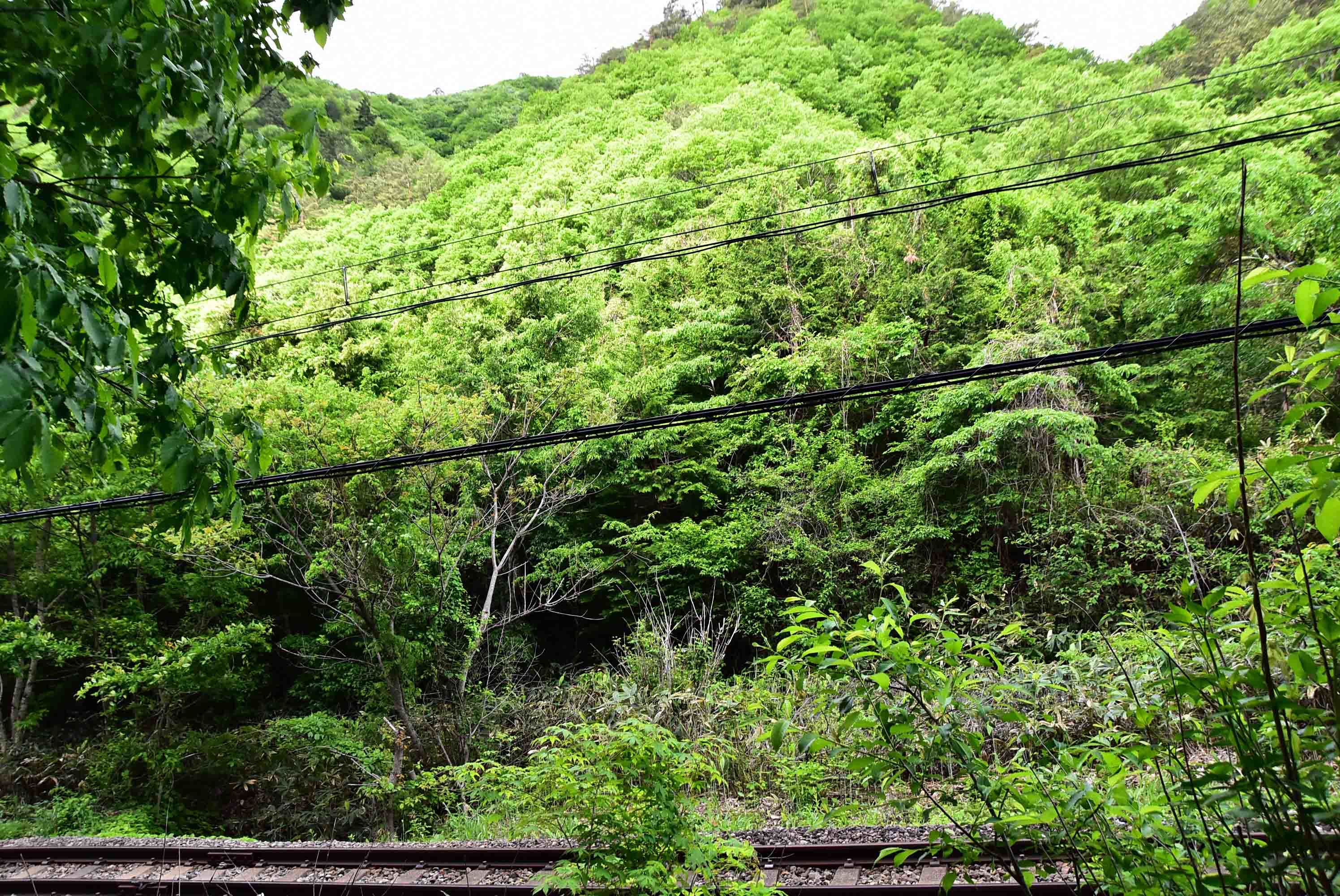 鶴が淵城 会津鉄道を渡り奥の姥捨山へ長塁が延びている