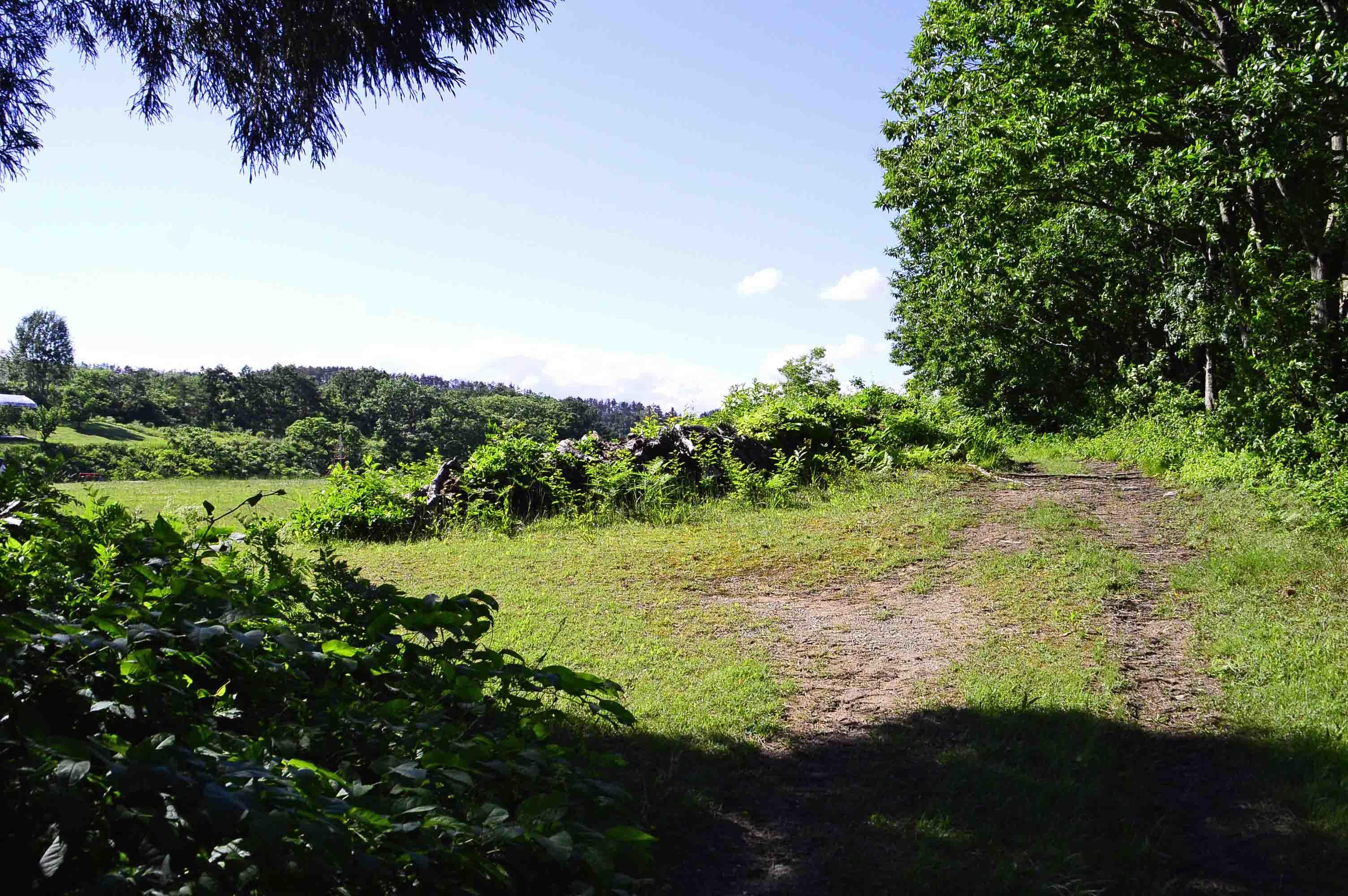 成島館 北側は公園となる