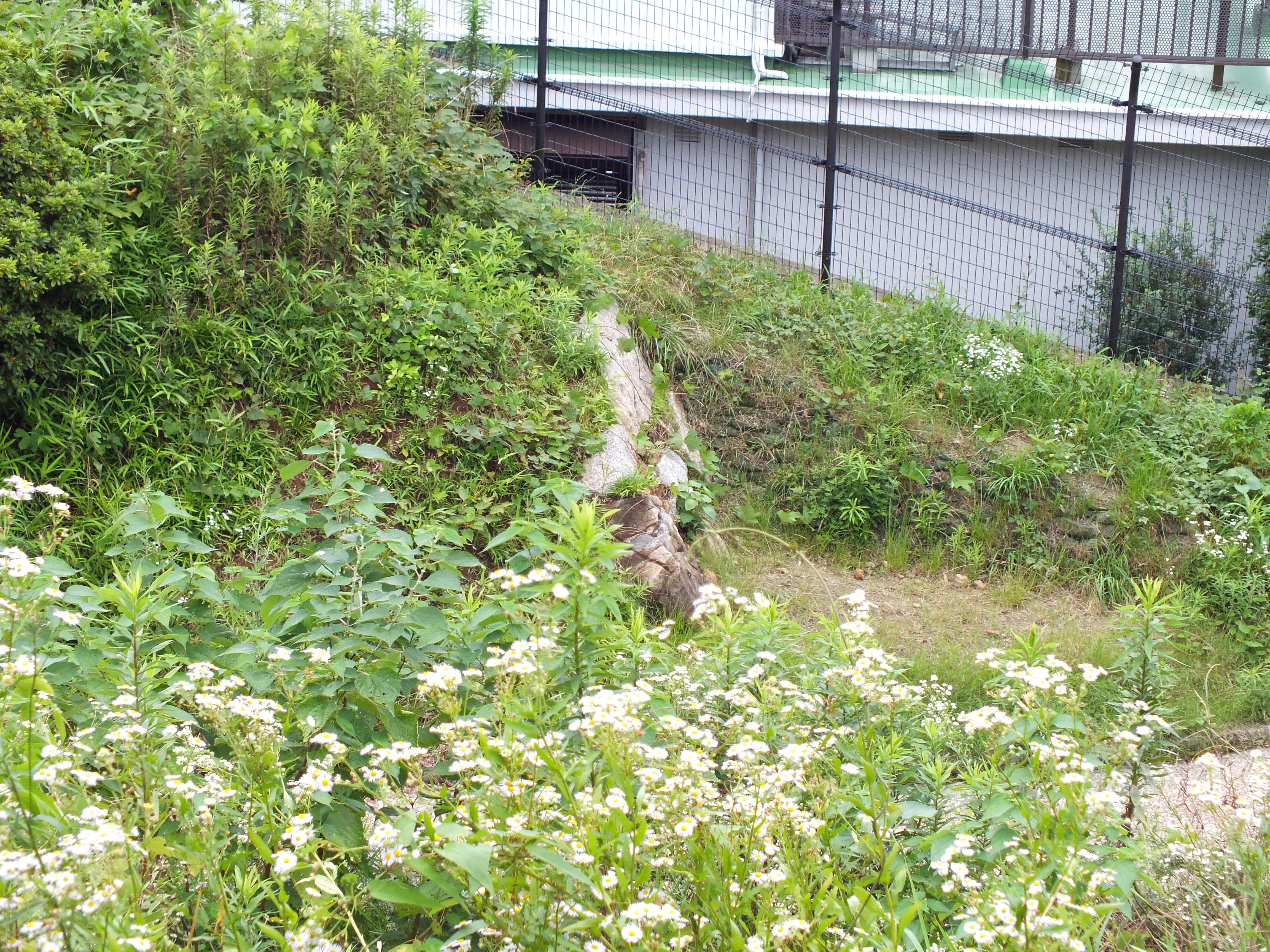 名島城 大手石垣2