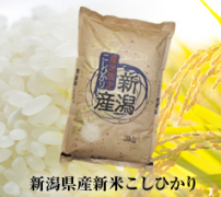 前澤 お米3キロ