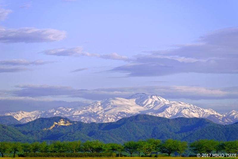 絶景探しの旅 - 0219 葉桜並木と雪の白山 初夏の三重奏 (石川県 川北町)