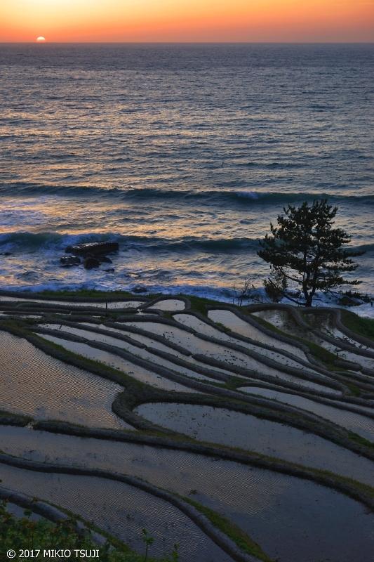 絶景探しの旅 - 0221 棚田と海に沈む夕日 (白米千枚田 /石川県 輪島市)