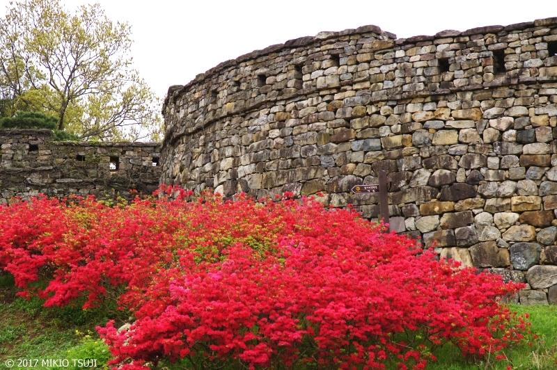 絶景探しの旅 - 0244 初夏の高敞邑城(コチャンウプソン)の城壁 (韓国 全羅北道)
